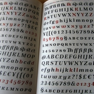 Pismo Type Specimen 5