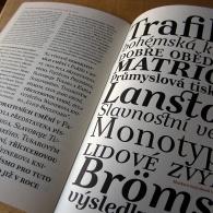 Pismo Type Specimen 6