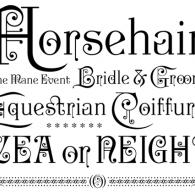 Horsehair Type Design