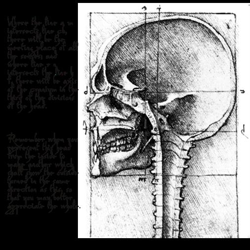 daVinci-Skull-Open