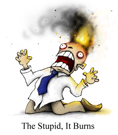 The Stupid, It Burns!