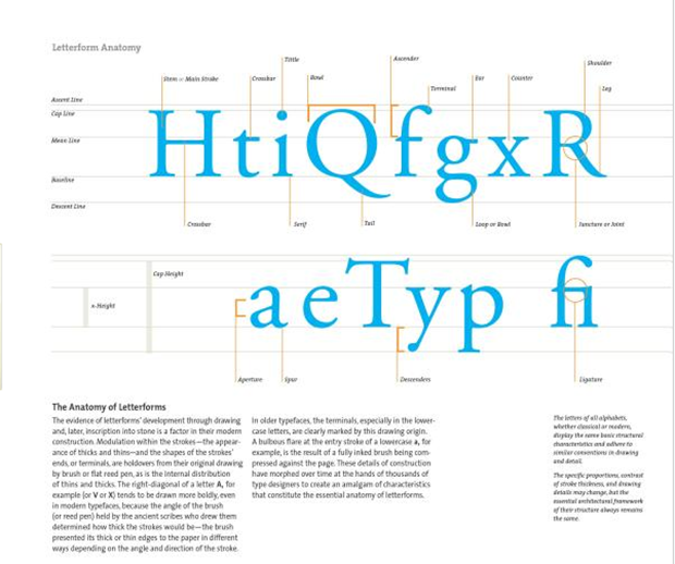 The Typography Workbook, Letterform Anatomy