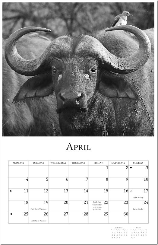 2011 Calendar - page005