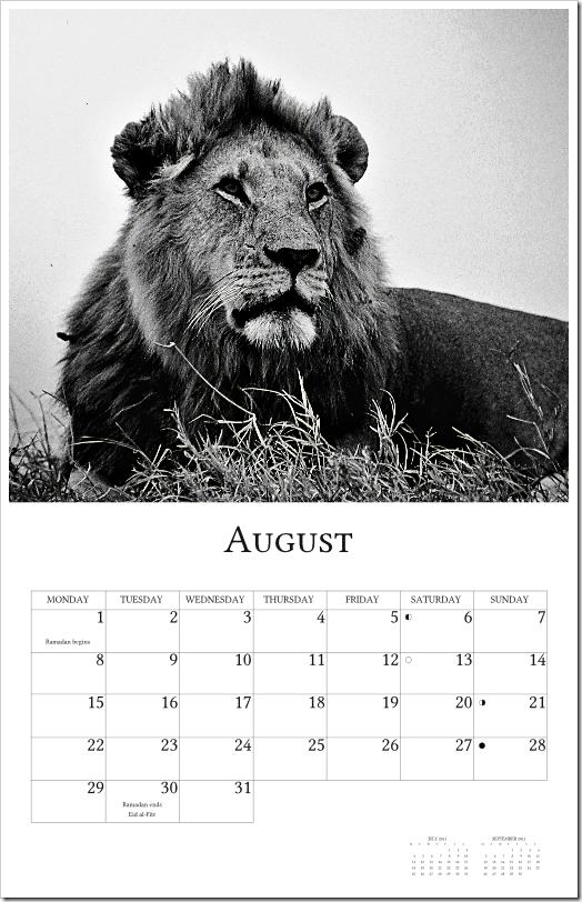 2011 Calendar - page009