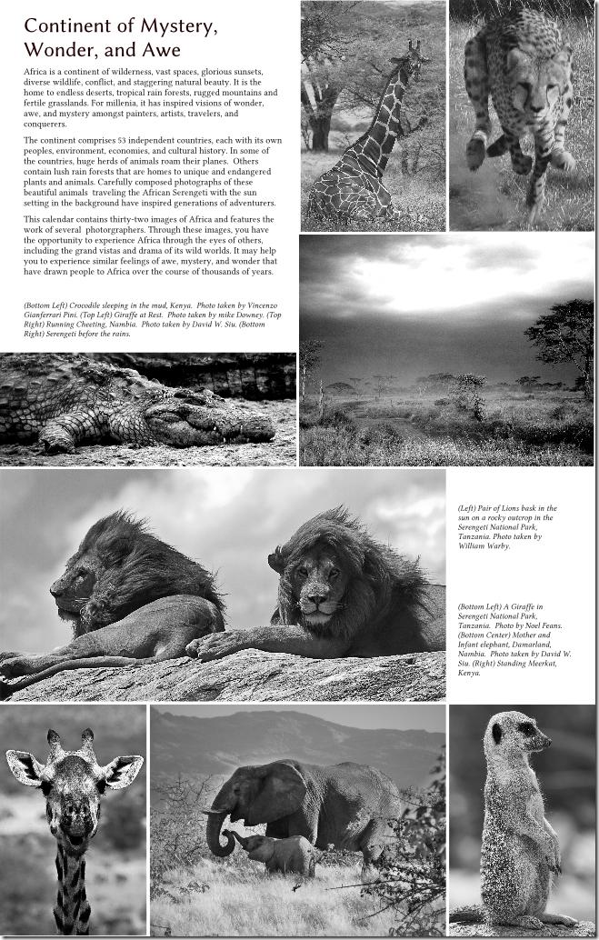 2011 Africa 02