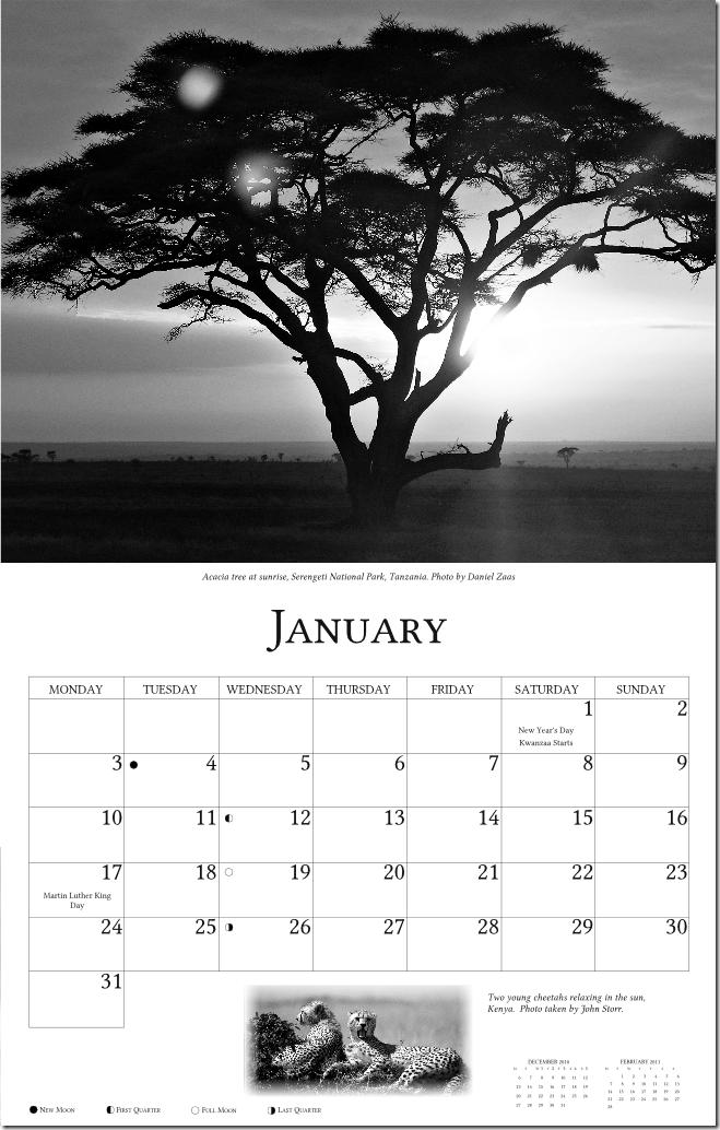 2011 Africa 03