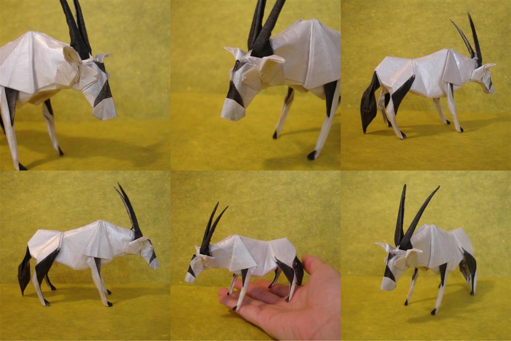 Origami Artist Galen - Bison