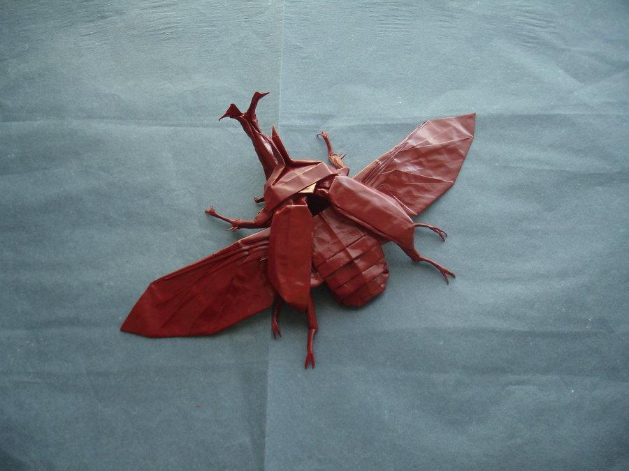 Origami Artist Galen - Samuraii Beatle